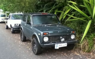 1988  NIVA Review