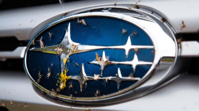 Subaru exec says 'everybody' is telling them their cars are