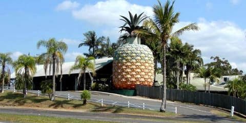 Queensland's Big Pineapple to be transformed into car museum