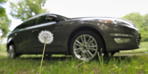 Ford investigating dandelions for sustainable rubber source