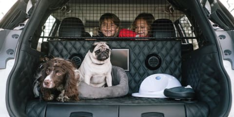 Nissan X-Trail 4Dogs concept revealed