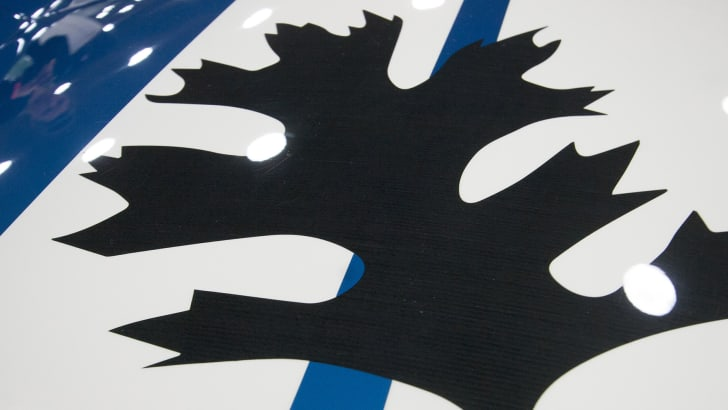 3d-printed-shelby-cobra-replica-leaf