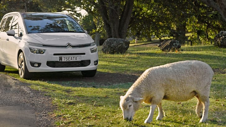 Citroen C4 Picasso - Sheep Shoo