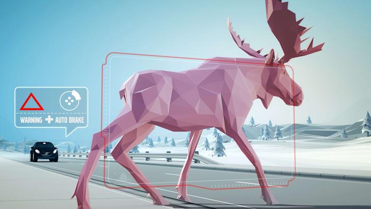 Volvo-Animal-Detection-4