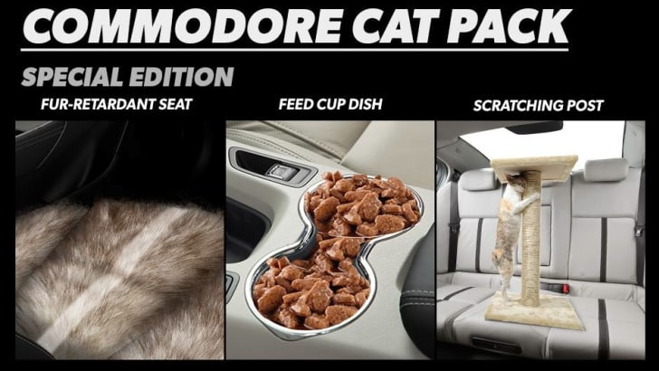Holden Commodore Cat Pack