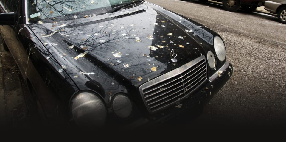 Mechanical sympathy: Quit hurting your car!