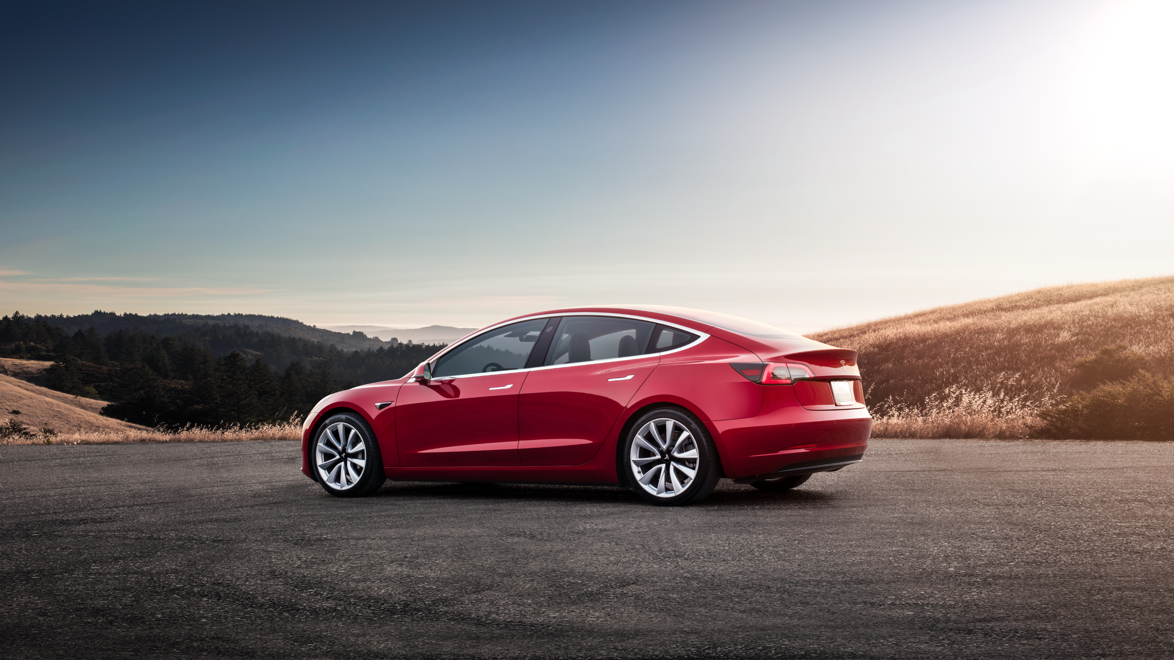 Tesla Model 3: Long Range rear-drive culled overseas | CarAdvice